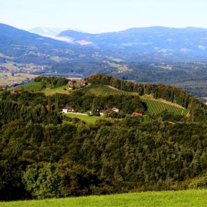 Wandern am Eichberg