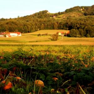 Wundervoller Ausblick am Radweg bei beginnender Abenddämmerung (ca. 150m vom Haus entfernt aufgenommen)
